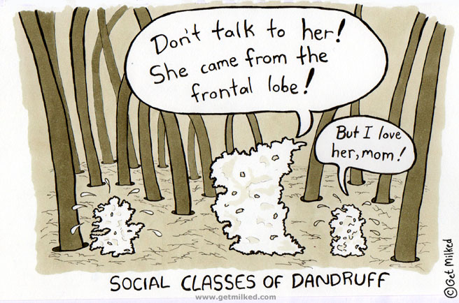 Social Classes Of Dandruff